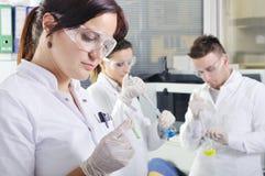 Jeunes scientifiques attirants d'étudiants de doctorat dans le laboratoire images libres de droits