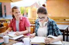 Jeunes type futé et fille faisant leur travail dans le campus universitaire Image stock