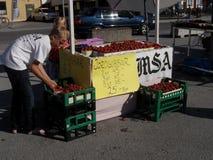 Jeunes vendeurs de fraise en le Gotland Image libre de droits