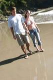 Jeunes verticales de couples Image stock