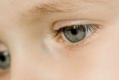 Jeunes yeux de garçon Image libre de droits