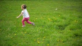 Jeux d'une fille de Cutie avec le chien sur un pré Le temps est ensoleillé Elle est entourée par l'herbe verte banque de vidéos