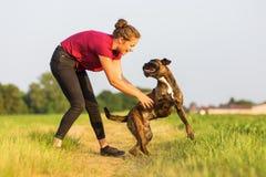 Jeux de jeune fille avec un chien de boxeur Photographie stock libre de droits