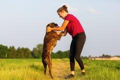 Jeux de jeune fille avec un chien de boxeur Images stock