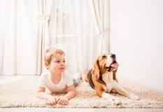 Jeux drôles de chien Photos stock