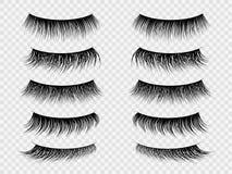 Jeux faux Cils réalistes, fausse mèche épaisse sur l'oeil fermé Maquillage à la mode de salon de beauté de femmes, ensemble de ve illustration de vecteur