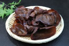 Jew`s Ear Fungus. This is the ingredients called the Jew`s Ear Fungus Royalty Free Stock Photos