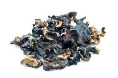Jew 's Ear Mushroom Royalty Free Stock Images