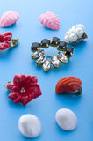 Jewel brooch and earring close up Royalty Free Stock Images