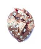 Jewel heart Stock Photo