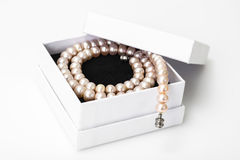 Jewel of pink pearls. Studio Photor Royalty Free Stock Images