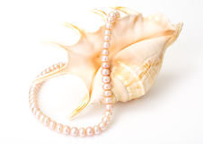 Jewel of pink pearls. Studio Photor Royalty Free Stock Photography