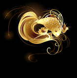 Jeweler goldfish