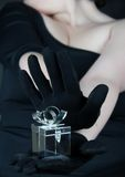 Jewelery Kasten Lizenzfreie Stockbilder