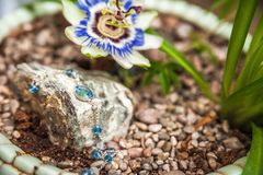 Jewelery made of natural stones against the backdrop of blossoming pasiflora. Bracelets, rings, necklaces, handmade earrings close. Up. The texture of natural royalty free stock images