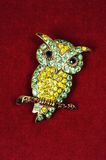 Jewelled owl brooch. Royalty Free Stock Images