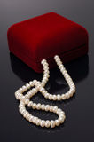 jewellery коробки Стоковые Фотографии RF