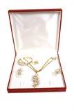 Jewellery in box Stock Image