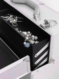 Jewellery Case Stock Photography