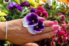 Jewellery,flowers Royalty Free Stock Photos
