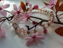 Jewellery and flower mixture on white background. Blossom tree branch with pink buds and flowers with a pearl and diamond bracelet. Shot on white background Stock Photography