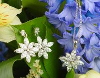 Jewellery on flowers Stock Photos