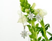 Jewellery on flowers Royalty Free Stock Image