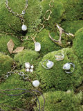 Jewellery On Mossy Stones Stock Photography
