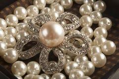 jewelry Стоковые Изображения RF