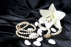 Jewelry 6 stock image