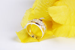 Jewelry. Royalty Free Stock Photo