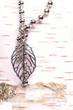 Jewelry on a birch. A birch tree  an a Jewelry on a leaf in steel Stock Images