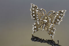 Jewelry - Butterfly brooch Royalty Free Stock Photos