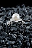 Jewelry. Collection of jewelry on black background Royalty Free Stock Photo