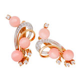 Jewelry earring Royalty Free Stock Images