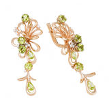 Jewelry earring Royalty Free Stock Photography