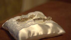 Jewelry earrings Royalty Free Stock Image