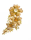 Jewelry expensive Brooch Stock Images
