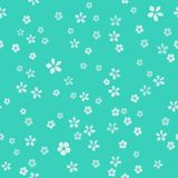 Many small white flowers with gold core. Luxury turquoise background. vector illustration
