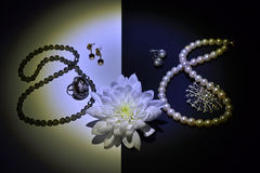 Jewelry and gems. Good taste in women`s jewelry Royalty Free Stock Images