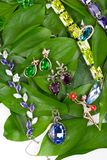Jewelry at green leaves Royalty Free Stock Photo