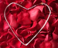 Jewelry necklace over red rose petals Royalty Free Stock Photography