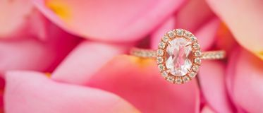 Jewelry pink diamond ring on beautiful rose royalty free stock photo