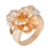 Jewelry ring. Isolated on the white background Royalty Free Stock Images