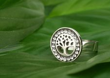 Jewelry ring with diamonds, shape of tree, on green leafs as background stock photos
