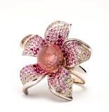 Jewelry, ring Stock Photos
