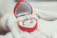 Jewelry ring Royalty Free Stock Photo