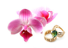Jewelry rings with flowers royalty free stock photography