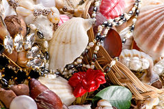 Jewelry with seashells macro Stock Photo