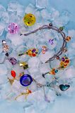 Jewels at ice Royalty Free Stock Photo